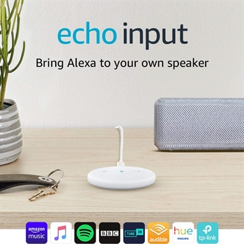Echo Input - Bring Alexa to your own speaker- SOLD OUT